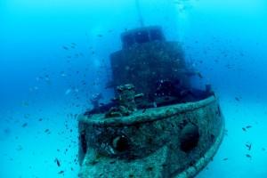 MV_Rozi_Malta_01