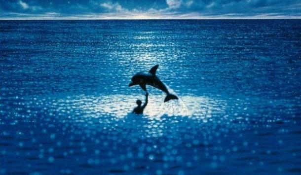 Le grand bleu, des images magiques à partager entre amis