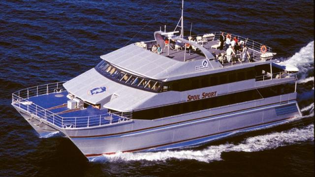 Comment travailler dans la plongée sur la Grande Barrière de Corail? 2