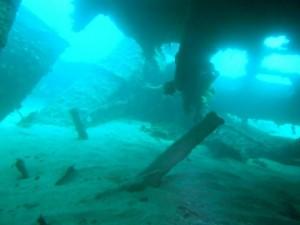 HMS_MAORI_MALTA_DIVING (5)