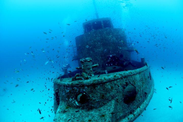 La plongée à Malte : épaves, récifs, grottes et tant d'autres !