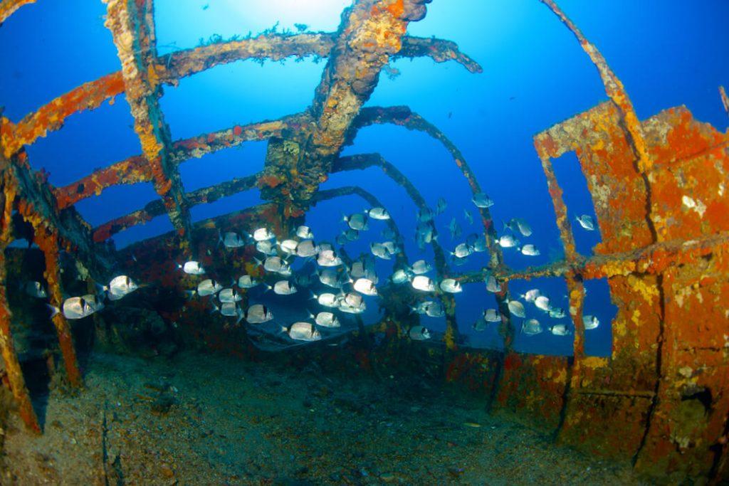 Les 10 plus beaux lieux pour pratiquer la plongée en Méditerranée